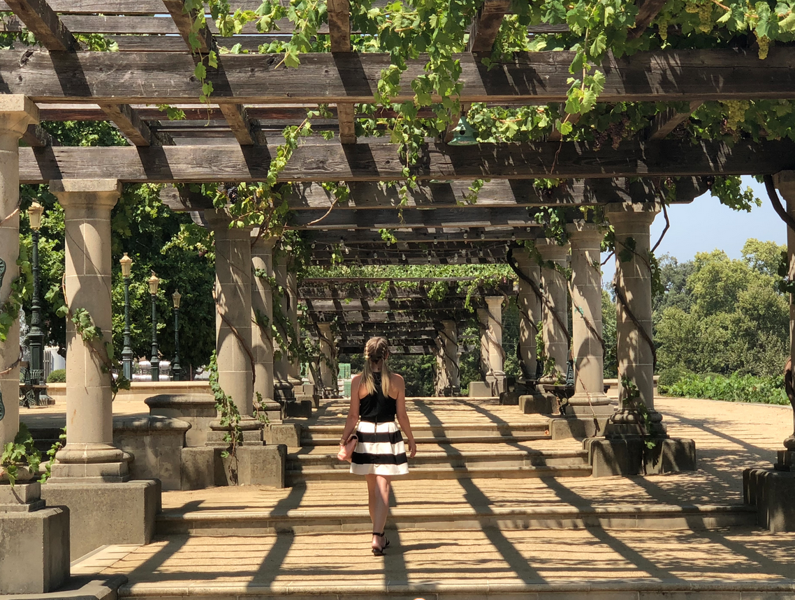 Ashlee Dozier walking through a Napa vineyard and winery in the spring with a grapevine trellis