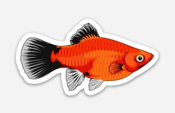 Platy Fish Sticker