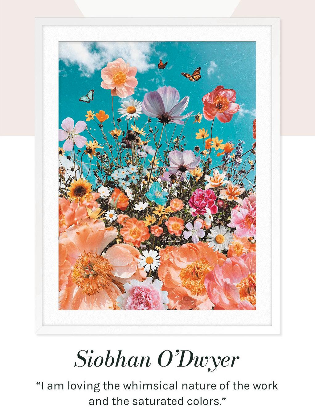 Siobhan O'Dwyer