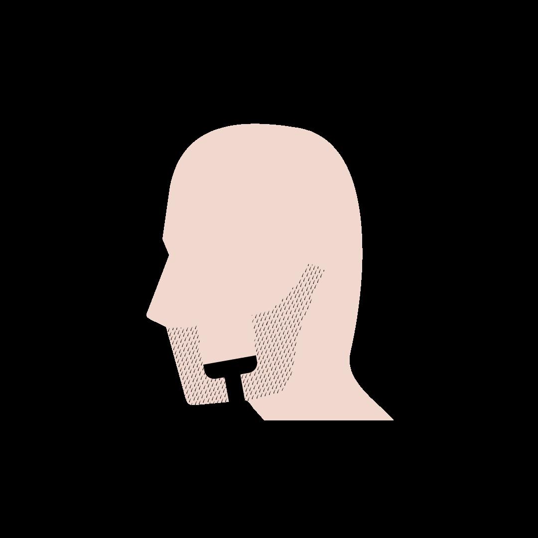 Skægpest