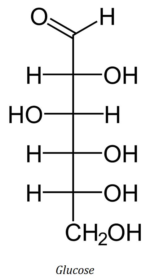 molécule de glucose, un glucide simple