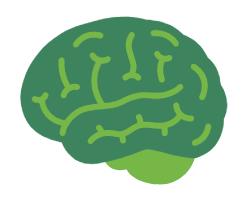 Le cerveau consomme des glucides