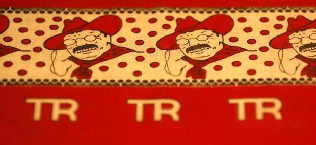 teddy roosevelt bandana detail
