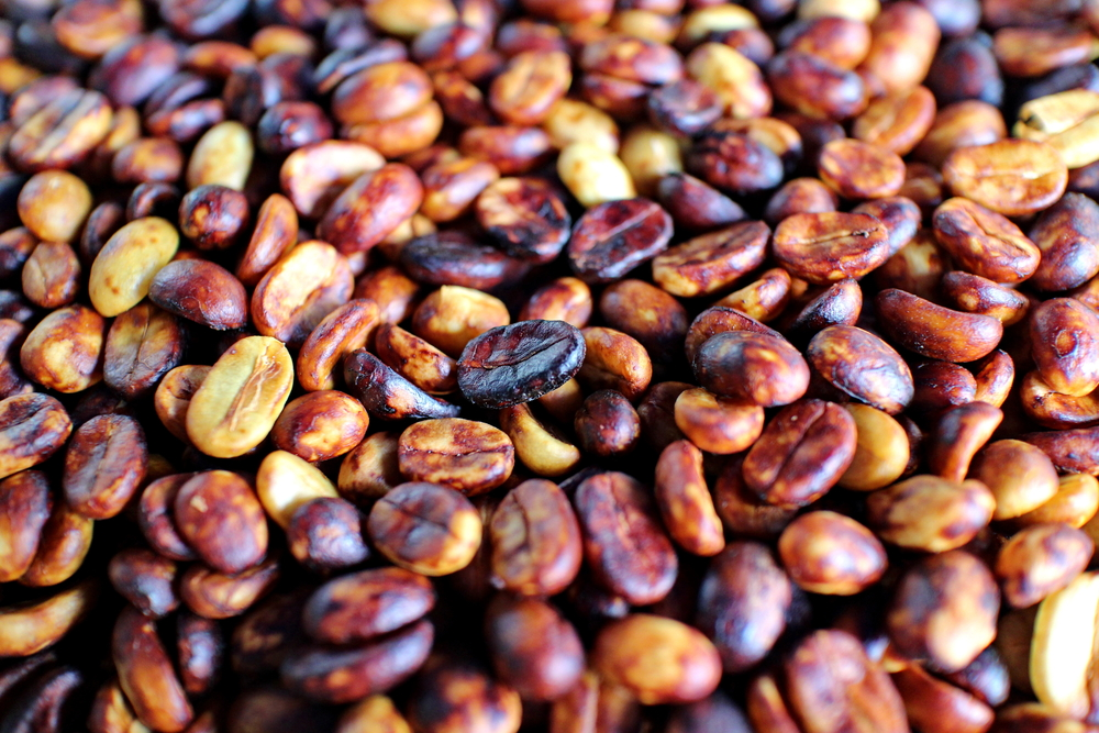 Dried coffee cherry that contains mucilage