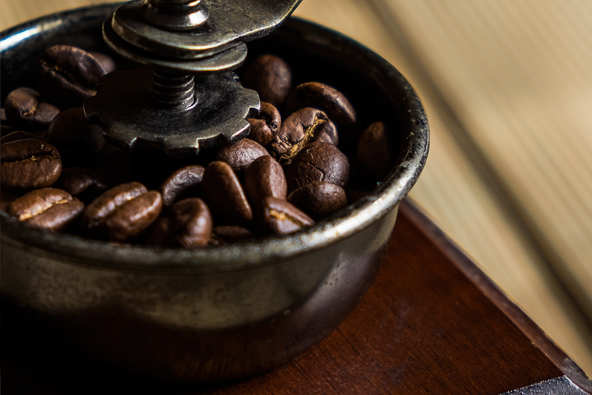 A burr grinder with coffee beans