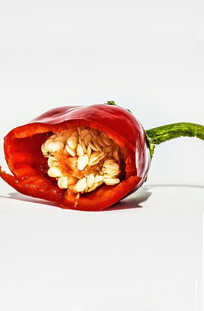 Em artigo sobre alergia e sensibilidade na pele, imagem em fundo branco traz uma pimenta vermelha sobre uma mesa branca, cortada ao meio, dentro da qual se veem as sementes.