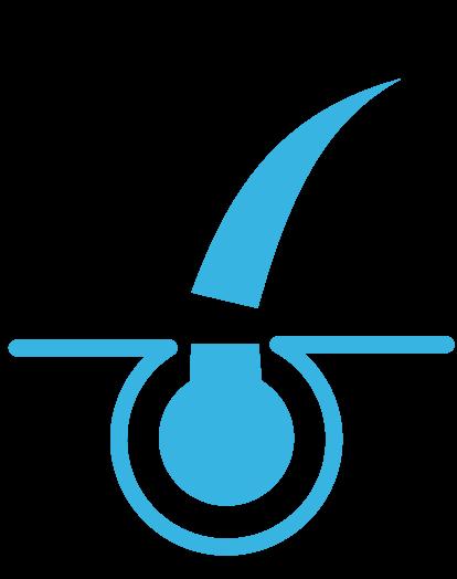 Em artigo sobre coceira na barba e como resolver, imagem mostra desenho esquemático de pelo, bulbo capilar e corte, em azul com fundo branco.
