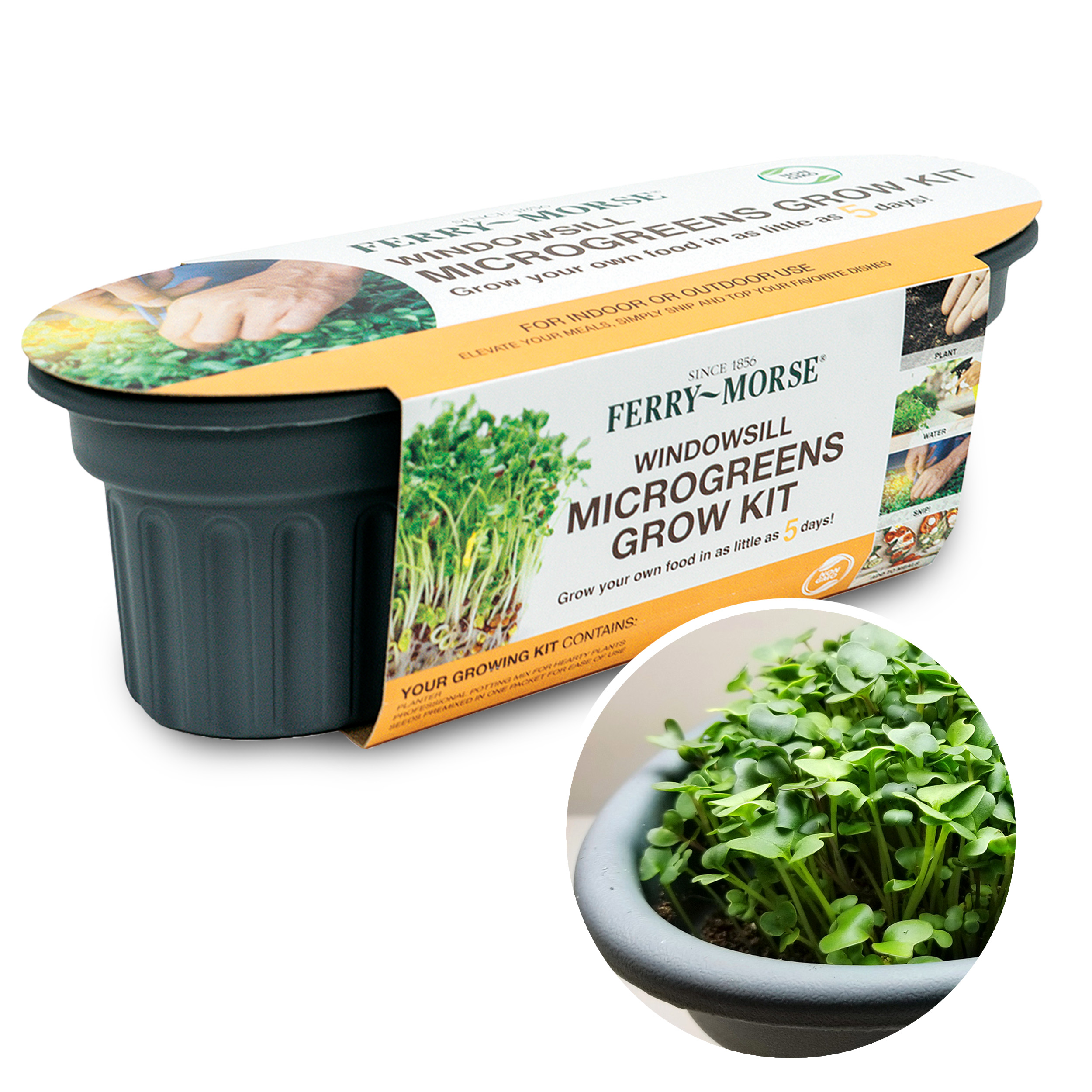 Ferry-Morse Microgreens Windowsill Grow Kit pictured in its retail packaging