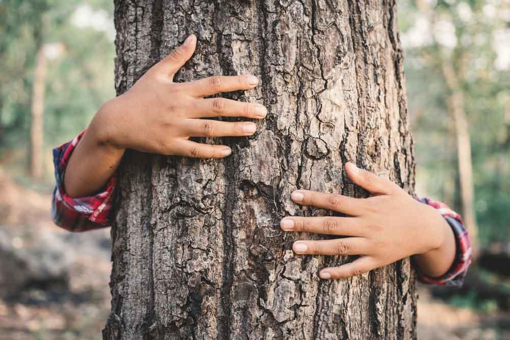 Objměte strom