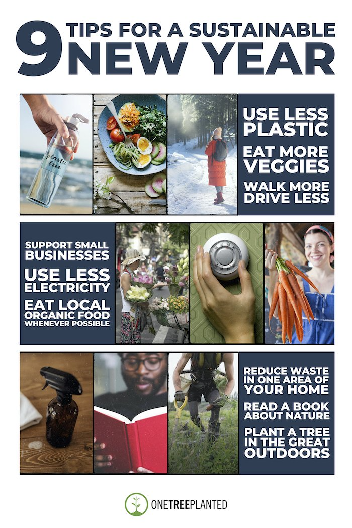 9 Tips to A Happy Sustainable New Year
