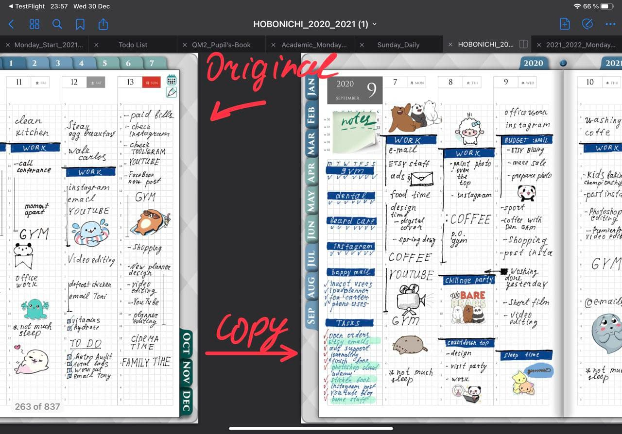 original and duplicated page template in goodnotes 5 ipadplanner.com