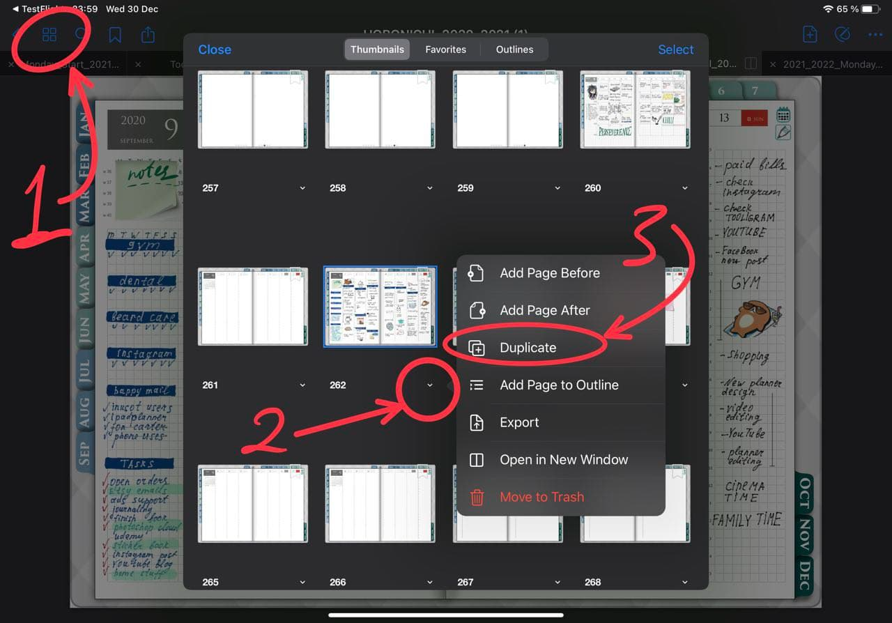 how to duplicate a page in goodnotes with page oreview tool ipadplanner.com