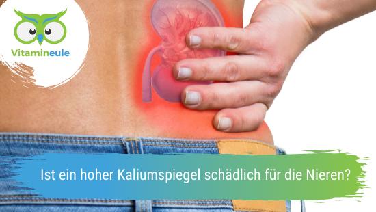Ist ein hoher Kaliumspiegel schädlich für die Nieren?