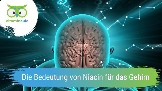 Die Bedeutung von Niacin für das Gehirn
