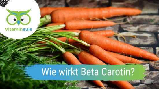 Wie wirkt Beta Carotin (Pro Vitamin A) im menschlichen Körper?
