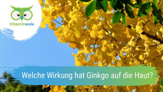 Welche Wirkung hat Ginkgo auf die Haut?