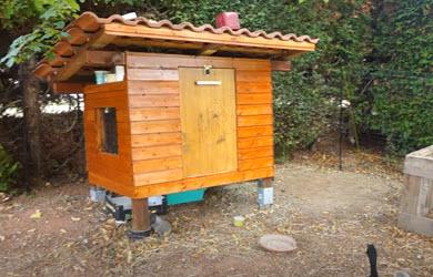 fabriquer soi-même une cabane pour canards coureurs indiens: facile et joli!