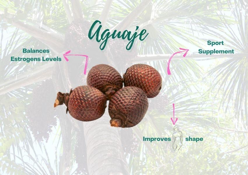 Aguaje Sport Supplement