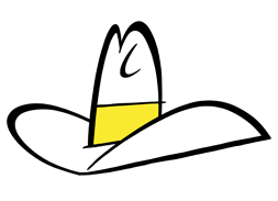 illustrated hat