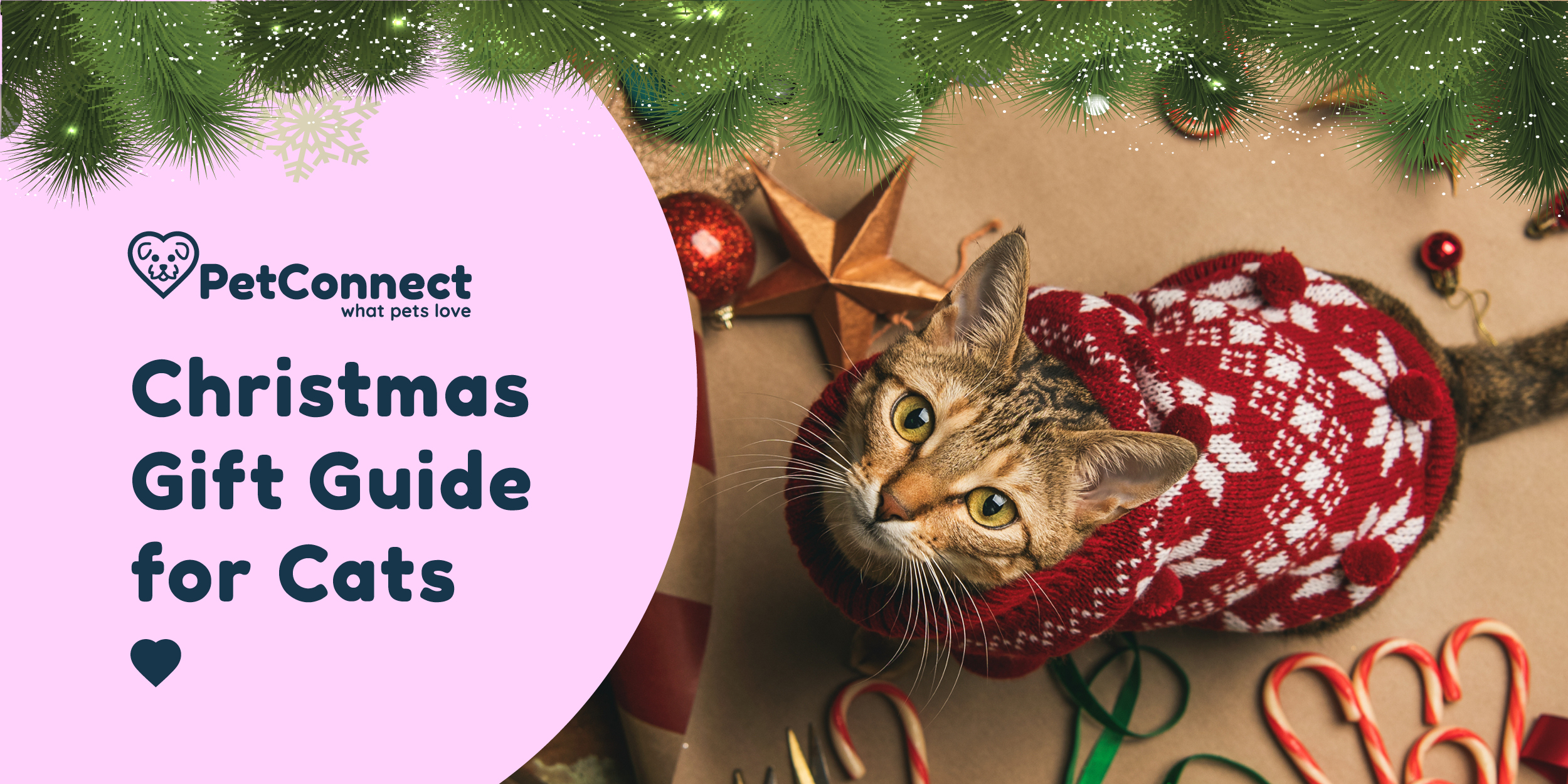 Pet Connect Christmas Collection