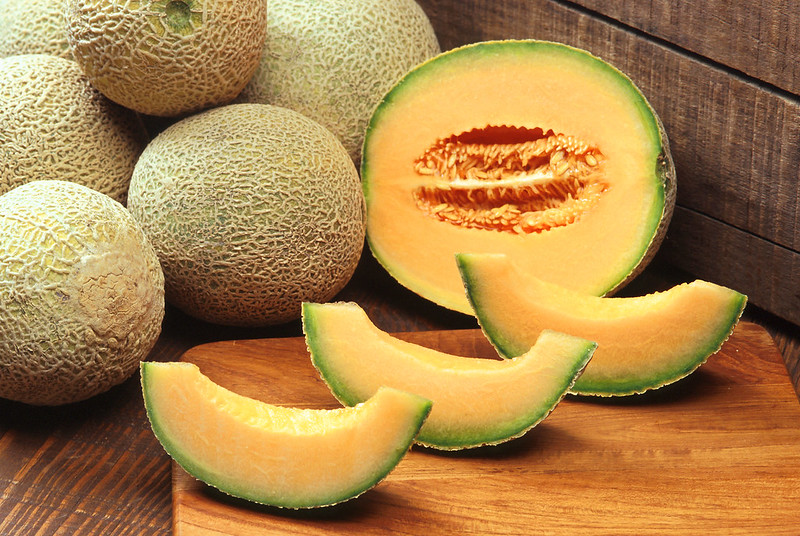 melon for cats