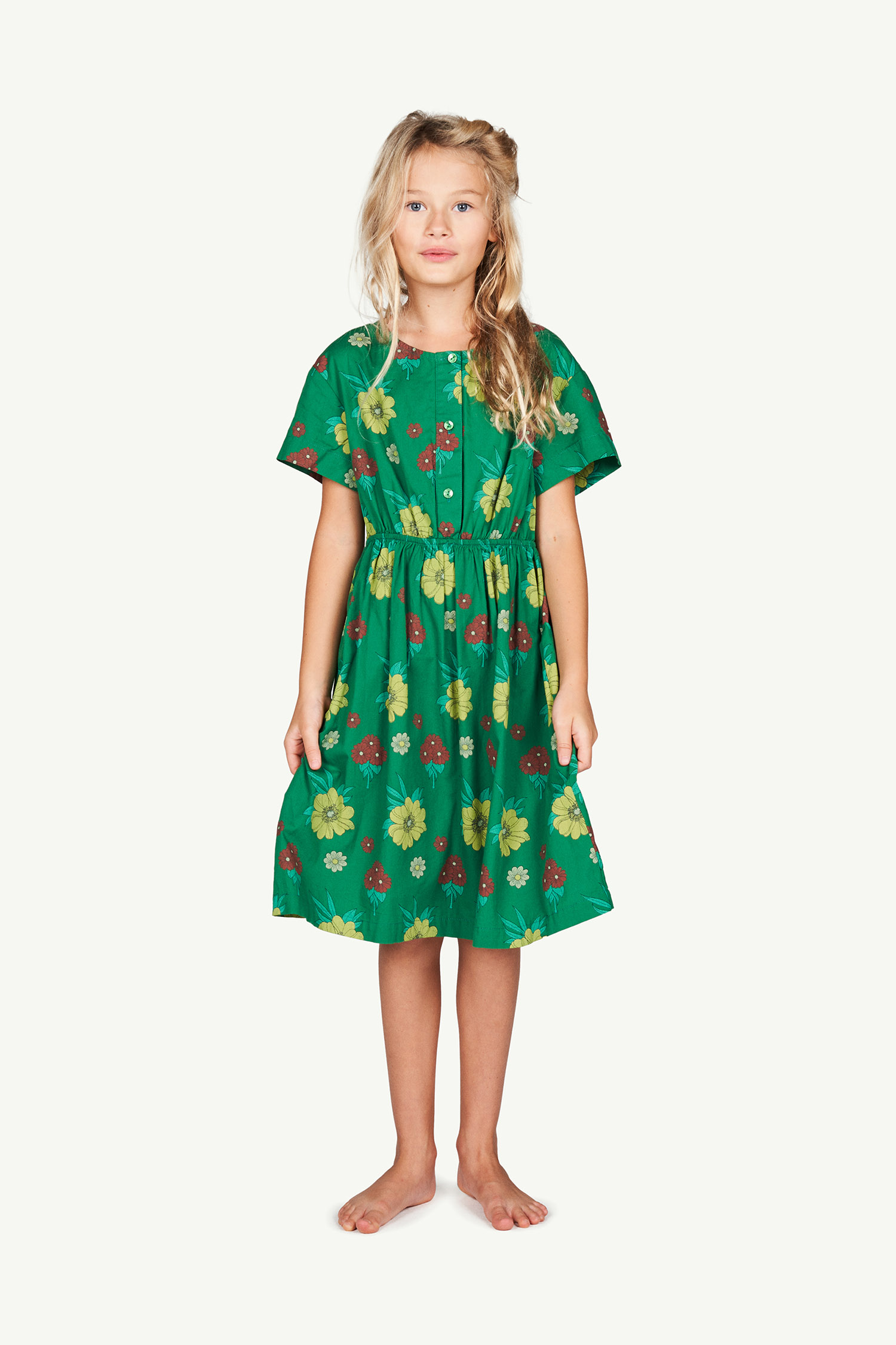 the animals observatory dolphin kids dress green flowers