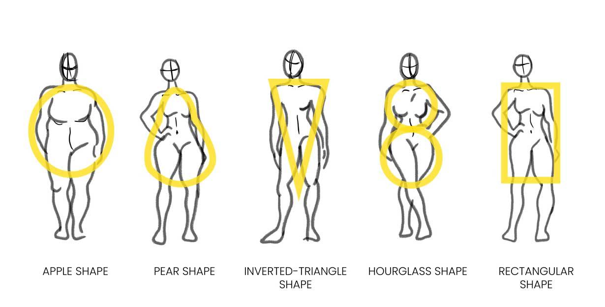 Women's body shapes