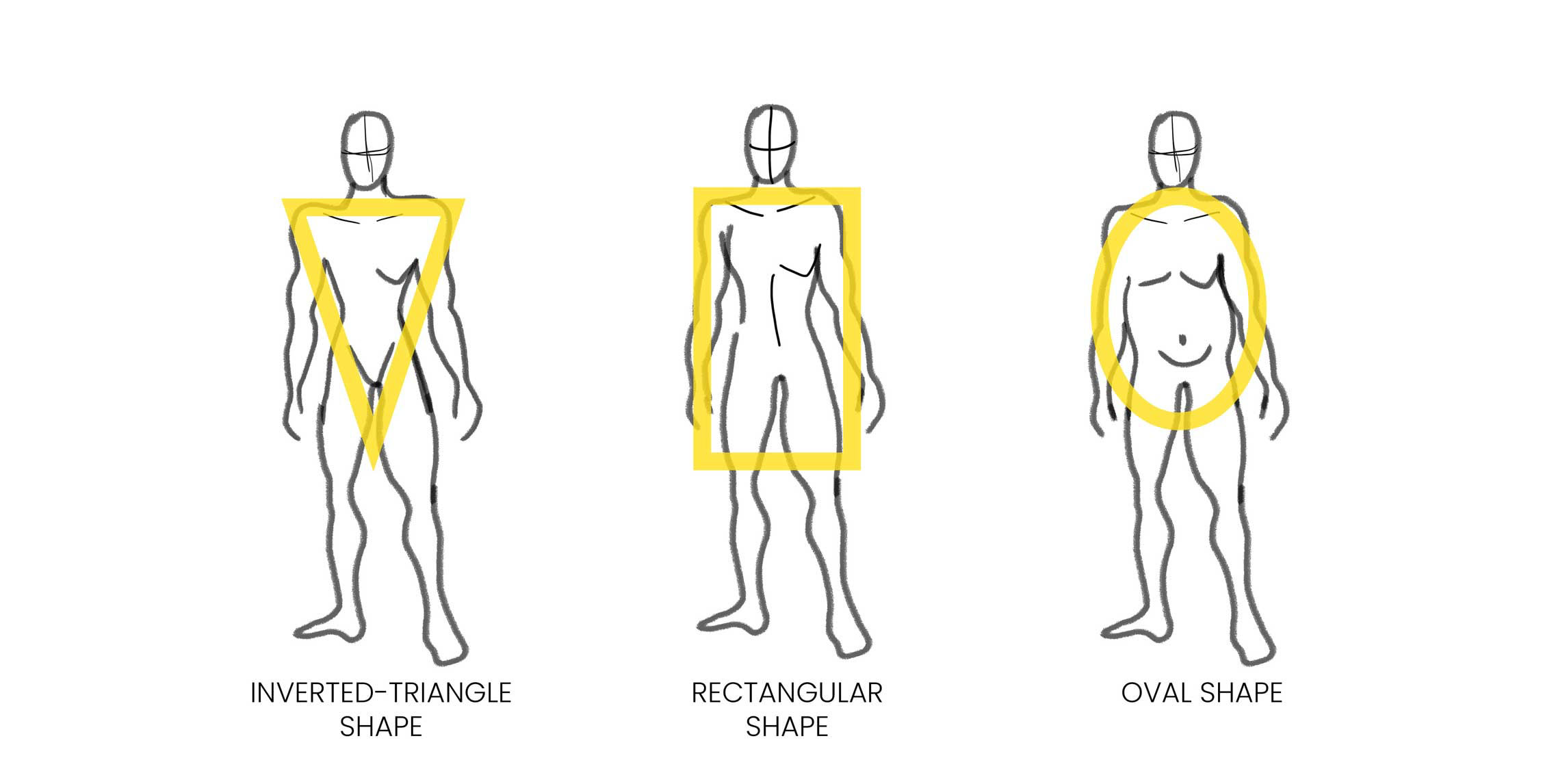 Men's body shapes (inverted-triangle, rectangular, and oval)