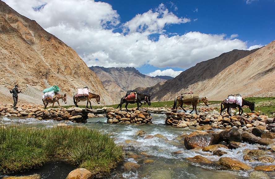 Horses carrying mail across a river