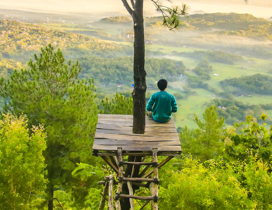 Person sitting alone atop a treetop platform with a vast forest stretching out around them.