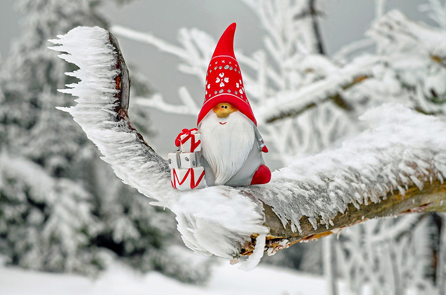 A funny Christmas elf on a snowy branch.
