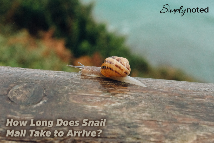 How Long Does Snail Mail Take to Arrive?