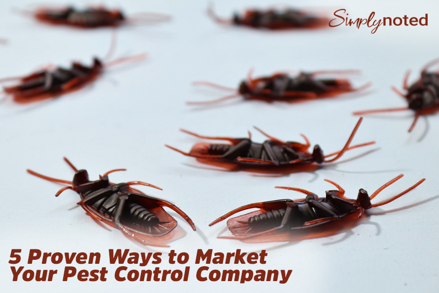5 Proven Ways to Market Your Pest Control Company