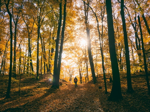 What do you need for camping this fall? Take a look at our essential camping gear list