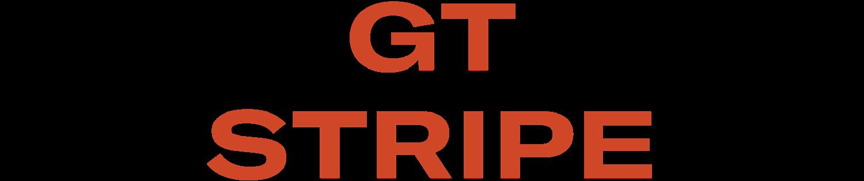 GT Stripe Vintage bike helmet