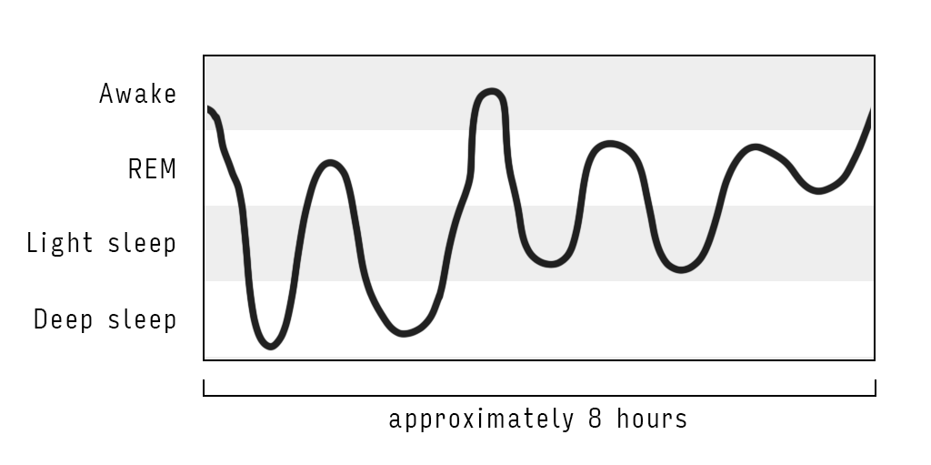 sleep cycles graph showing sleep stages through the night