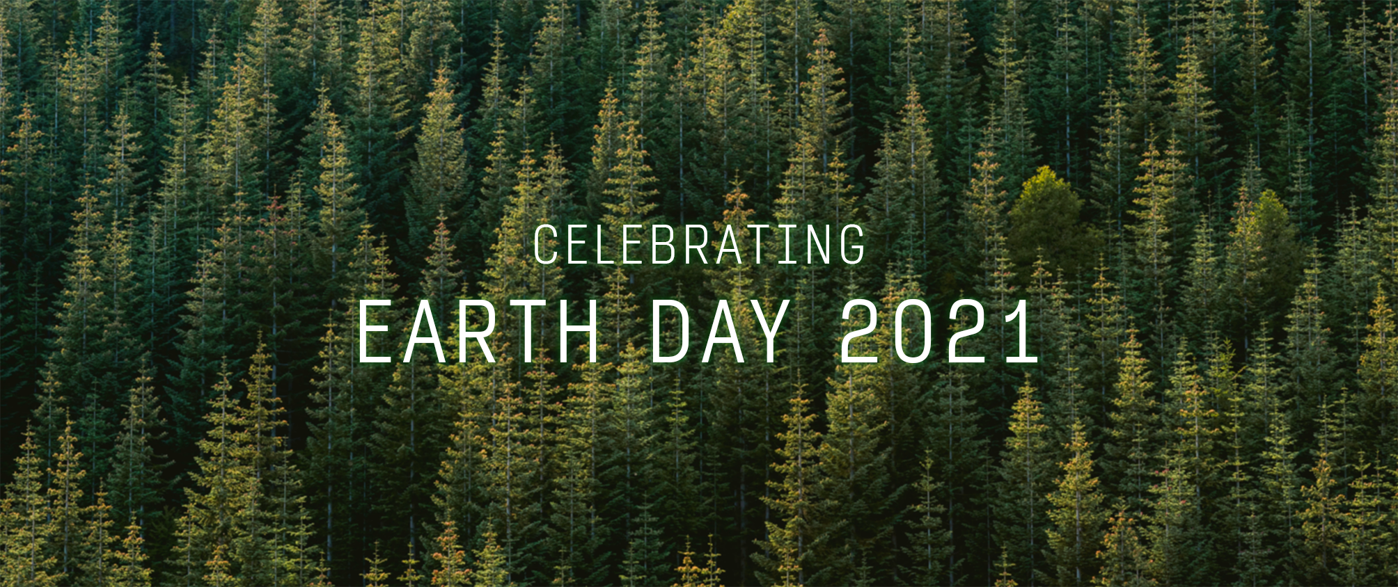 Earth Day 2021 banner with forest background