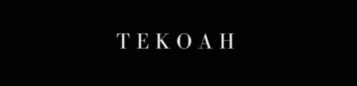 TEKOAH Collections